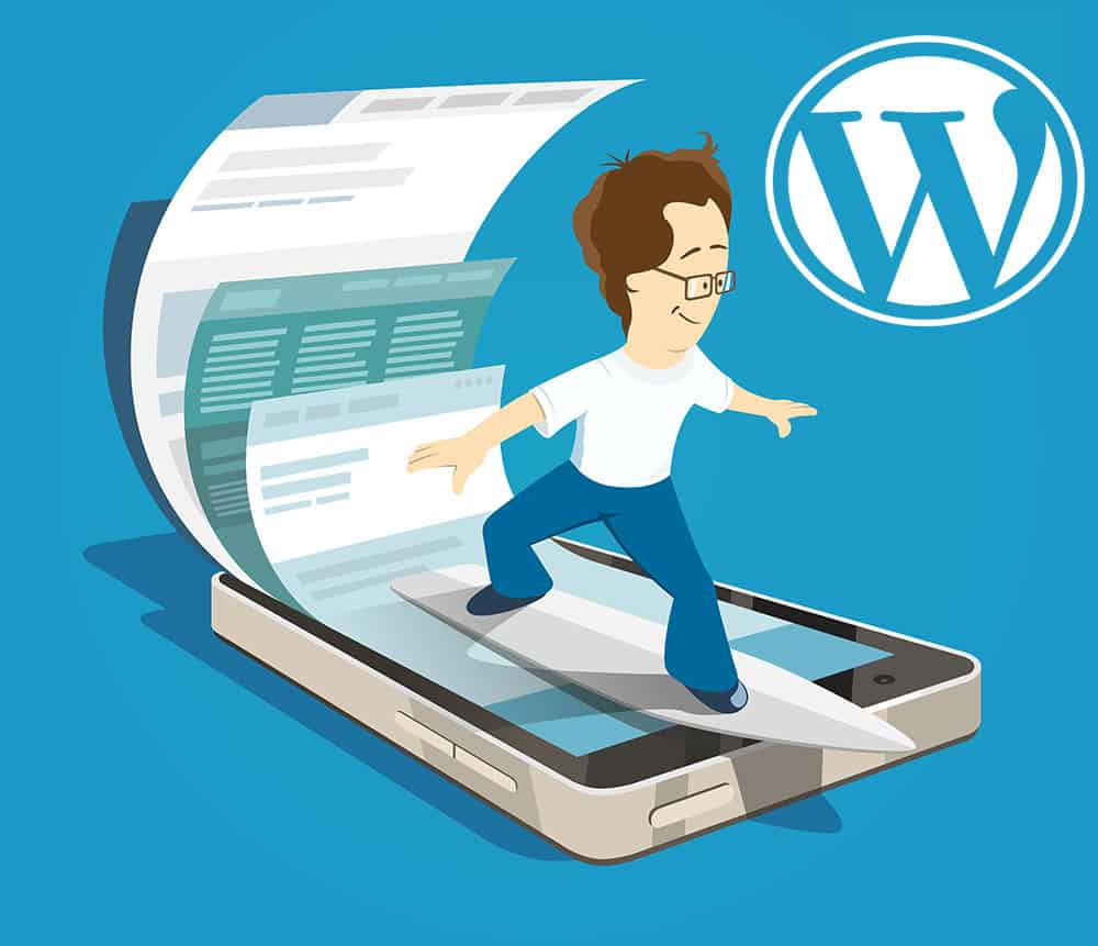 Which WordPress Plugins & Themes Can Speed Up Your Website?