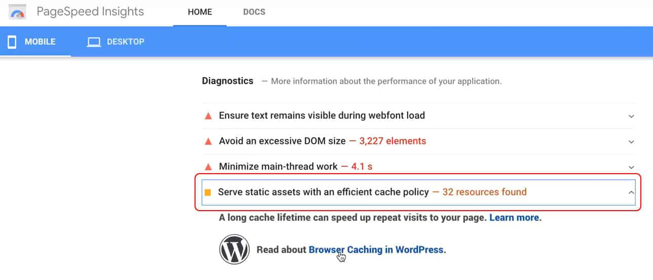 Static cache dropdown tab in PageSpeed Insights
