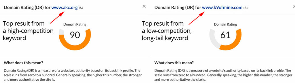 Domain Authority Differences